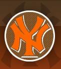 N_Y_logo