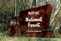 Wayne_Sign_Pic1